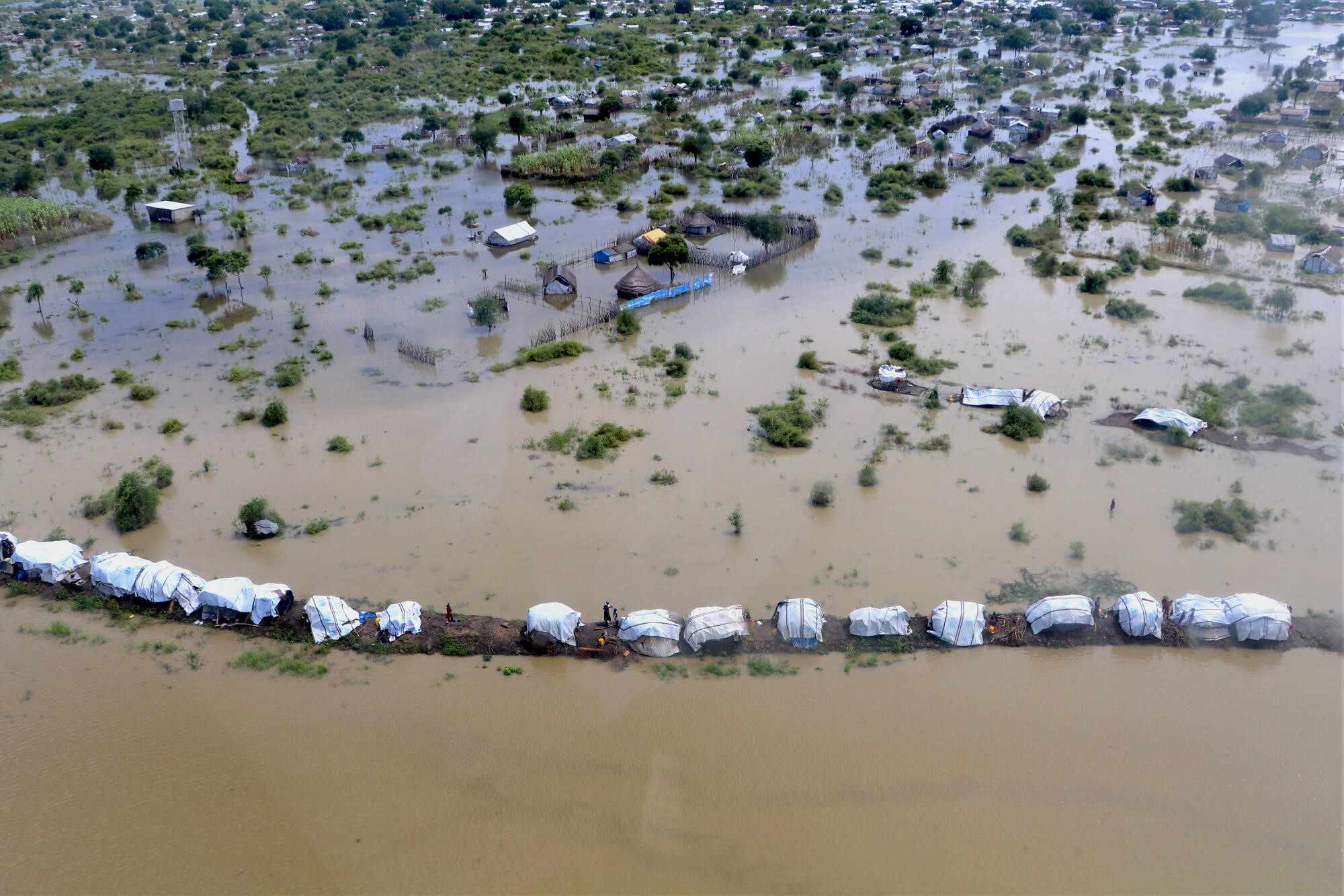 Government declares flood national emergency